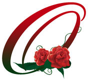 Letter O red floral  illustration. Red rose decorated letter O font , colorful and Stock Image