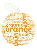 Letter orange. Organic fruits concept was created with typographic design Stock Photo