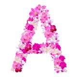 Letter A from orchid flowers isolated on white. With working path Royalty Free Stock Images