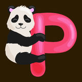 Letter P with animal panda for kids abc education in preschool. Animal panda and letter P for kids abc education in preschool.Cute animals letters english Vector Illustration