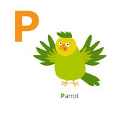 Letter P Parrot Zoo alphabet. English abc with animals Education cards for kids White background Flat design. Vector illustration stock illustration