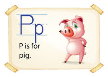 A letter P for pig Stock Photos