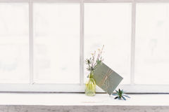 Letter and a plant in a bottle. On window Royalty Free Stock Images