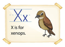 Letter X Stock Photography