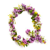 The letter «Q» made of various natural small flowers. stock images
