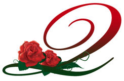 Letter Q red floral  illustration. Red rose decorated Letter Q font , colorful and Stock Image