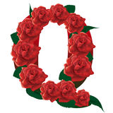 Letter Q red roses  illustration Stock Images