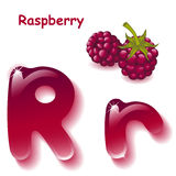 Letter R. Alphabet. English capital and uppercase letter R, stylized color of crimson juice.  berrys raspberry. vector illustration Royalty Free Stock Image