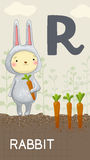 Letter R, animal ABC Stock Photography