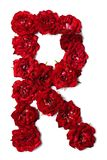 Letter R from flowers of red rose. Letter of the English alphabet from red buds of roses on white background stock photography