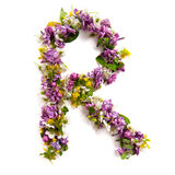 The letter «R» made of various natural small flowers. stock photo