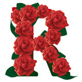 Letter R red roses  illustration Stock Photos