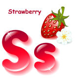 Letter S. Alphabet. English capital and uppercase letter S, stylized color of strawberry juice.  berry strawberry with blossom . vector illustration Royalty Free Stock Images