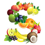 Letter S composed of different fruits with leaves Royalty Free Stock Photo