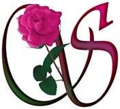 Letter S Floral FONT Stock Image