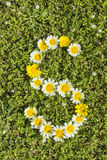 Letter S flower alphabet. Letter S from complete flower alphabet stock image