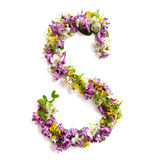 The letter «S» made of various natural small flowers. Stock Images