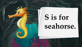 Letter S is for seahorse Stock Photos