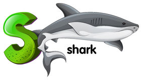A letter S for shark Stock Image