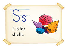 A letter S for shells Stock Photos
