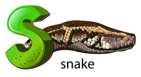 A letter S for snake. Illustration of a letter S for snake on a white background Royalty Free Stock Images