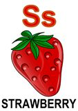 Letter S strawberry. Alphabet drawing for small school children S strawberry royalty free illustration