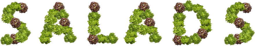 Letter salads. From green and violet fresh Salads Royalty Free Stock Images