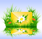 Letter or sms in grass spring summer style Stock Photos
