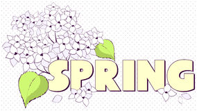 Letter spring with flower. Vector illustration Royalty Free Stock Photo