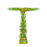 Letter T floral latin decorative character alphabet lettering sign Royalty Free Stock Image
