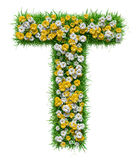 Letter T Of Green Grass And Flowers Stock Photography