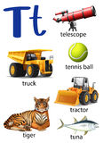 Letter T for telescope, truck, tennis ball, tractor, tiger and t Royalty Free Stock Photography