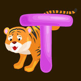 Letter T with tiger animal for kids abc education in preschool. Tiger animal and letter T for kids abc education in preschool.Cute animals letters english Vector Illustration