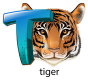 A letter T for tiger Royalty Free Stock Image