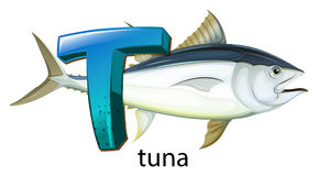 A letter T for tuna Stock Photo
