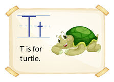 A letter T for turtle Royalty Free Stock Photos