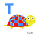 Letter T Turtle Zoo alphabet. English abc with animals Education cards for kids  White background Flat design Royalty Free Stock Images