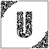 The letter U. Decorative Font with swirls and floral elements. Vintage style.  Royalty Free Stock Photo
