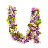 The letter «U» made of various natural small flowers. royalty free stock photo