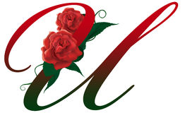 Letter U red floral  illustration. Red rose decorated letter U font , colorful and Royalty Free Stock Image