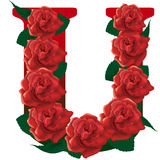 Letter U red roses  illustration Royalty Free Stock Photo