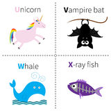 Letter U V W X Unicorn Vampire bat Whale X-ray fish Zoo alphabet. English abc with animals Education cards for kids  White Royalty Free Stock Photo