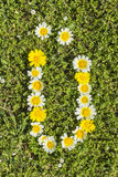 Letter UE flower alphabet. Letter UE from complete flower alphabet royalty free stock image