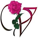 Letter V Floral FONT Stock Image