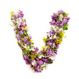 The letter «V» made of various natural small flowers. royalty free stock image