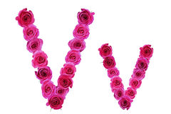Letter v  of roses Royalty Free Stock Photo