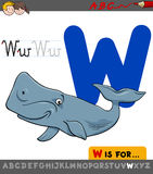 Letter w with cartoon whale animal. Educational Cartoon Illustration of Letter W from Alphabet with Whale Animal Character for Children Royalty Free Illustration