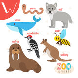 Letter W. Cute animals. Funny cartoon animals in vector. ABC book. Vector illustration vector illustration