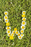 Letter W flower alphabet Royalty Free Stock Photography