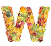 Letter W Royalty Free Stock Images